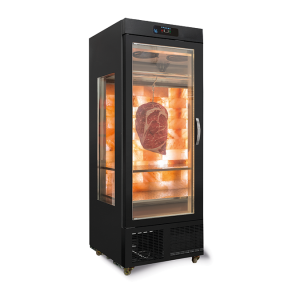 Gtech SY6-G-HM Dry Age Dik Tip Dry Age Buzdolabı 1 Cam Kapılı(Özel Tuzlu)